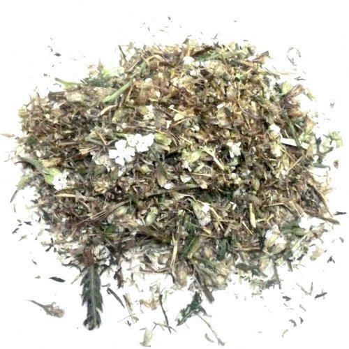 Schafgarbe, Zauberpflanze