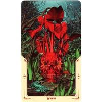thumb-Tarotkarten Santa Muerte-4