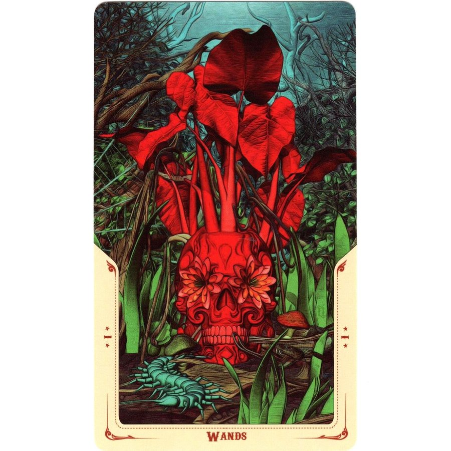 Tarotkarten Santa Muerte-4