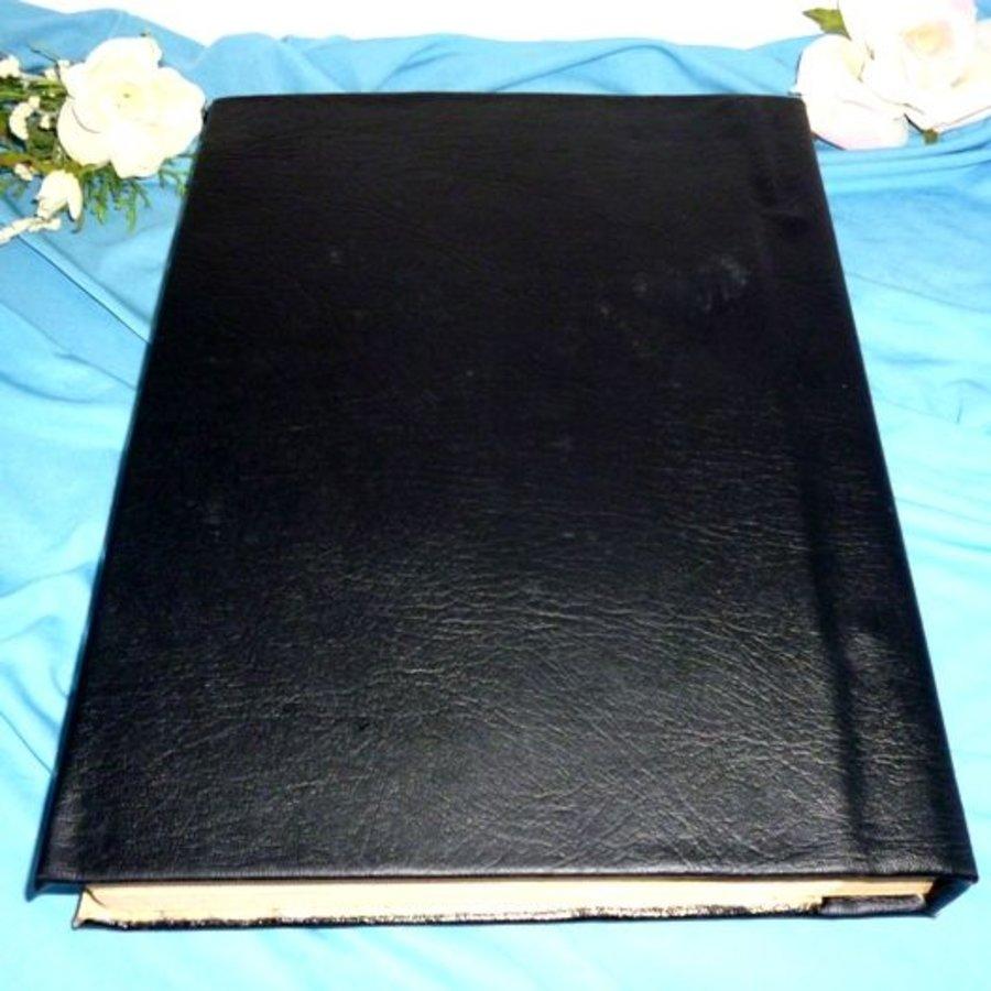 Buch der Schatten mit Fledermausflügelecken und Rosenpentagramm-3