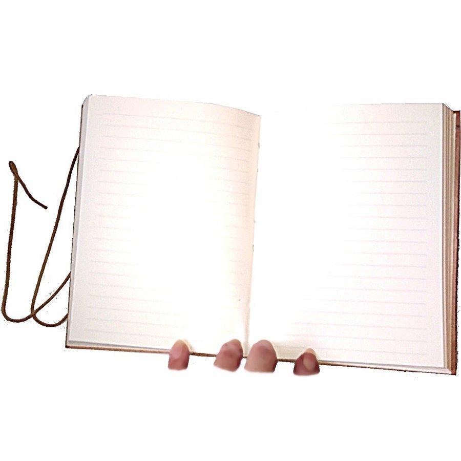 Schreibbuch mit Büffelledereinband-3