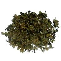 thumb-Beifuß (Artemisia vulgaris)-1