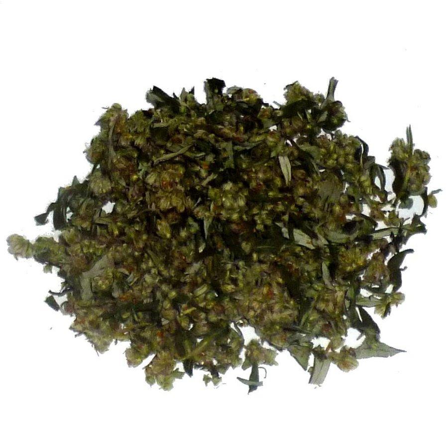 Beifuß (Artemisia vulgaris)-1
