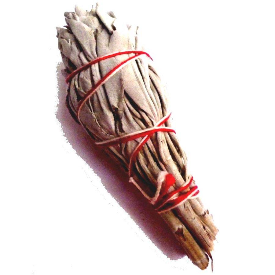 Salbei, Räucherpflanze, Smudge-Stick-1