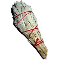 thumb-Salbei, Räucherpflanze, Smudge-Stick-2
