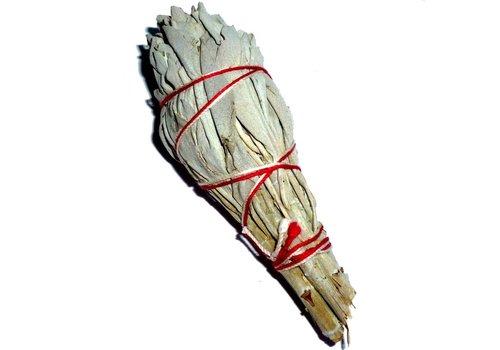 Weißer Salbei, Smudge-Stick