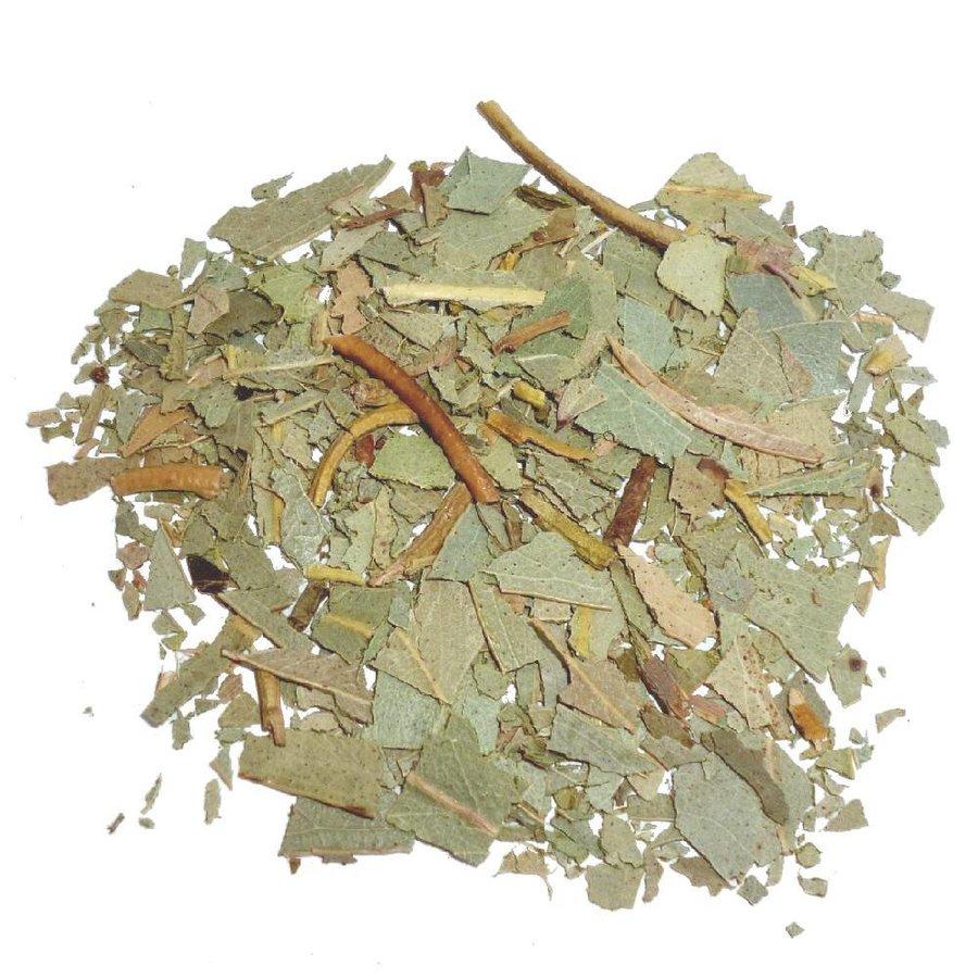 Eukalyptusblätter-2