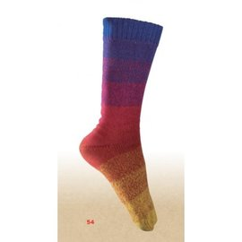 Katia Rainbow socks Box 54