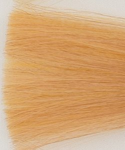 Haarkleur super licht blond honing - SSM - Colorly