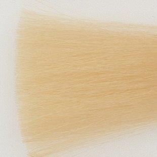 Haarkleur super licht blond naturel - SSN - Colorly