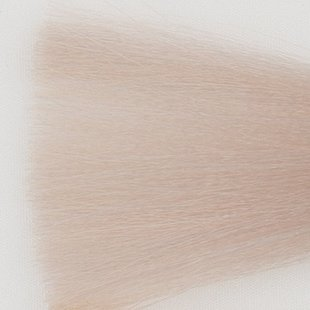 Haarkleur super licht blond zilver - SSA - Colorly