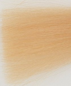 Haarkleur ultra licht blond tabak natuur - 10TN - Colorly