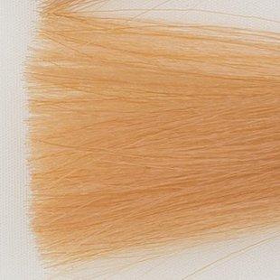 Itely Colorly 2020 acp - Haarkleur Zeer licht blond tabak natuur (9TN)
