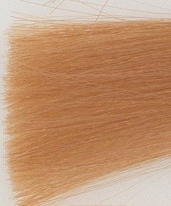 Haarkleur licht blond tabak natuur - 8TN - Colorly