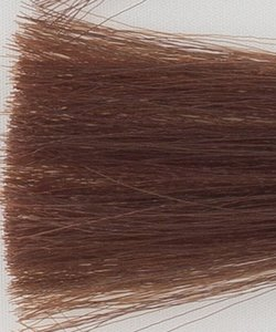 Haarkleur donker blond tabak natuur - 6TN - Colorly