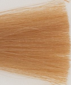 Haarkleur zeer licht blond goud - 9D - Colorly