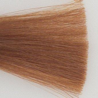 Itely Colorly 2020 acp Haarkleur 8BD Licht blond beige goud