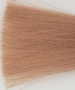Haarkleur zeer licht blond beige - 9B - Colorly
