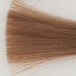Itely Colorly 2020 acp Haarkleur 8NI Licht blond
