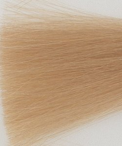 Haarkleur extra licht blond - 9N - Colorly
