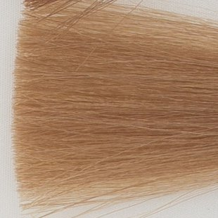 Haarkleur licht blond - 8N - Colorly