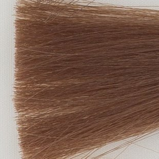 Haarkleur midden blond - 7N - Colorly