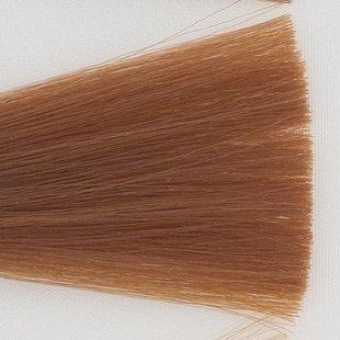 Haarkleur 8D Licht goud blond
