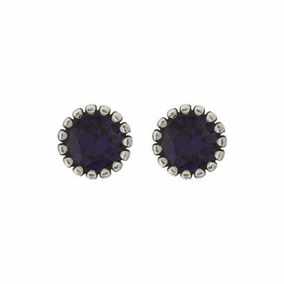 BIBA OORBELLEN Biba Oorstekers zilverkleurig met een tulpvormige geribbelde achterkant en een Swarovski steentje Purple Velvet