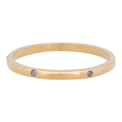 IXXXI JEWELRY RINGEN iXXXi Jewelry Vulring 2mm ELEGANCE  Goud Stainless steel