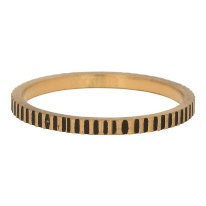 iXXXi JEWELRY iXXXi Schmuck Ring 2mm KARTELLEN Gold Edelstahl