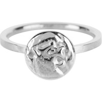 CHARMIN'S Charmins ring Coin of Power Steel Silver