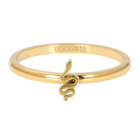 iXXXi JEWELRY iXXXi Vulring 2mm. Snake Stainless steel Goud