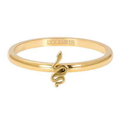 iXXXi JEWELRY iXXXi Vulring 2mm Snake in  Goud stainless staal