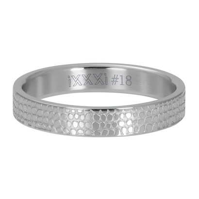 iXXXi JEWELRY iXXXi Washer 4mm GIRAFFE Silver colored stainless steel