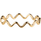 CHARMIN'S Charmins ring Wave Shiny Steel Goud