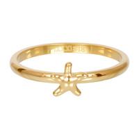 IXXXI JEWELRY RINGEN iXXXi Jewelry Vulring 2mm  Zeester Goudkleur