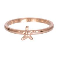 IXXXI JEWELRY RINGEN iXXXi Jewelry Vulring 2mm  Zeester Rosegoudkleur