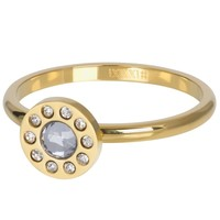 IXXXI JEWELRY RINGEN iXXXi Jewelry Vulring DIAMOND CIRCLE  2mm  Goudkleurig