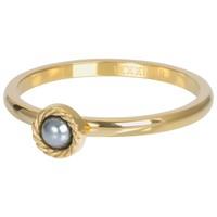 IXXXI JEWELRY RINGEN iXXXi Jewelry Vulring ROYAL GREY  2mm  Goudkleurig