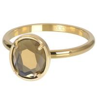 IXXXI JEWELRY RINGEN iXXXi Jewelry Vulring GLAM OVAL  2mm  Goudkleurig