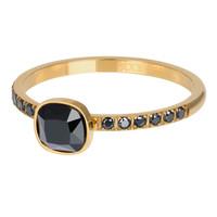 IXXXI JEWELRY RINGEN iXXXi Jewelry Vulring PRINCE  2mm  Goudkleurig    -
