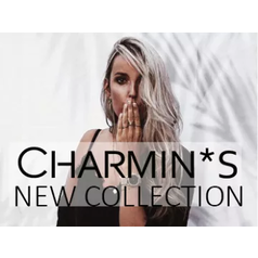 CHARMIN'S STEEL RINGS