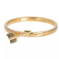 IXXXI JEWELRY RINGEN iXXXi Jewelry Vulring Arrow  2mm Goudkleurig