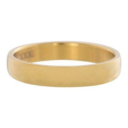 IXXXI JEWELRY RINGEN iXXXi Vulring 0.4 cm Staal Shiny Goudkleurig