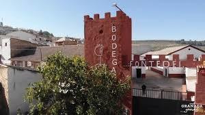 Bodega Fontedei