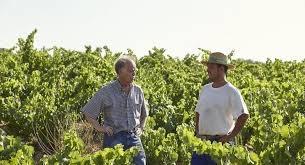 Fontedei wijnmakers