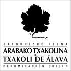 D.O. Arabako Txakolina