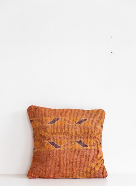 Special Vintage Pillow 444