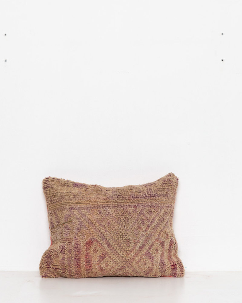Special Vintage Pillow 487
