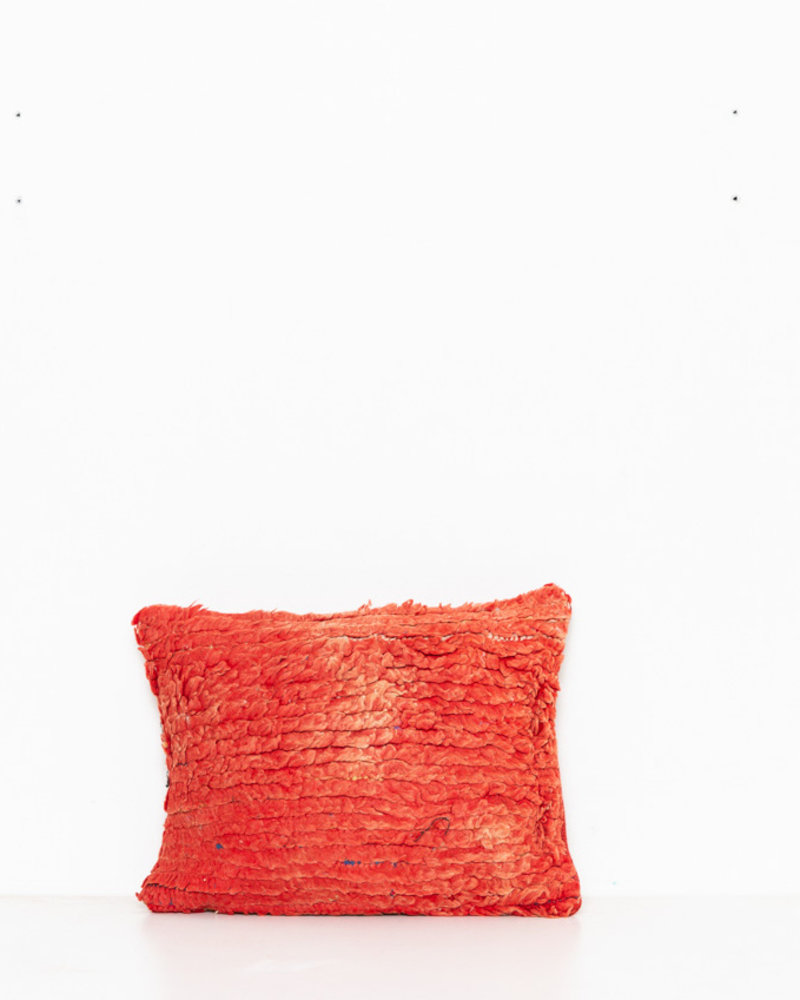 Special Vintage Pillow 497